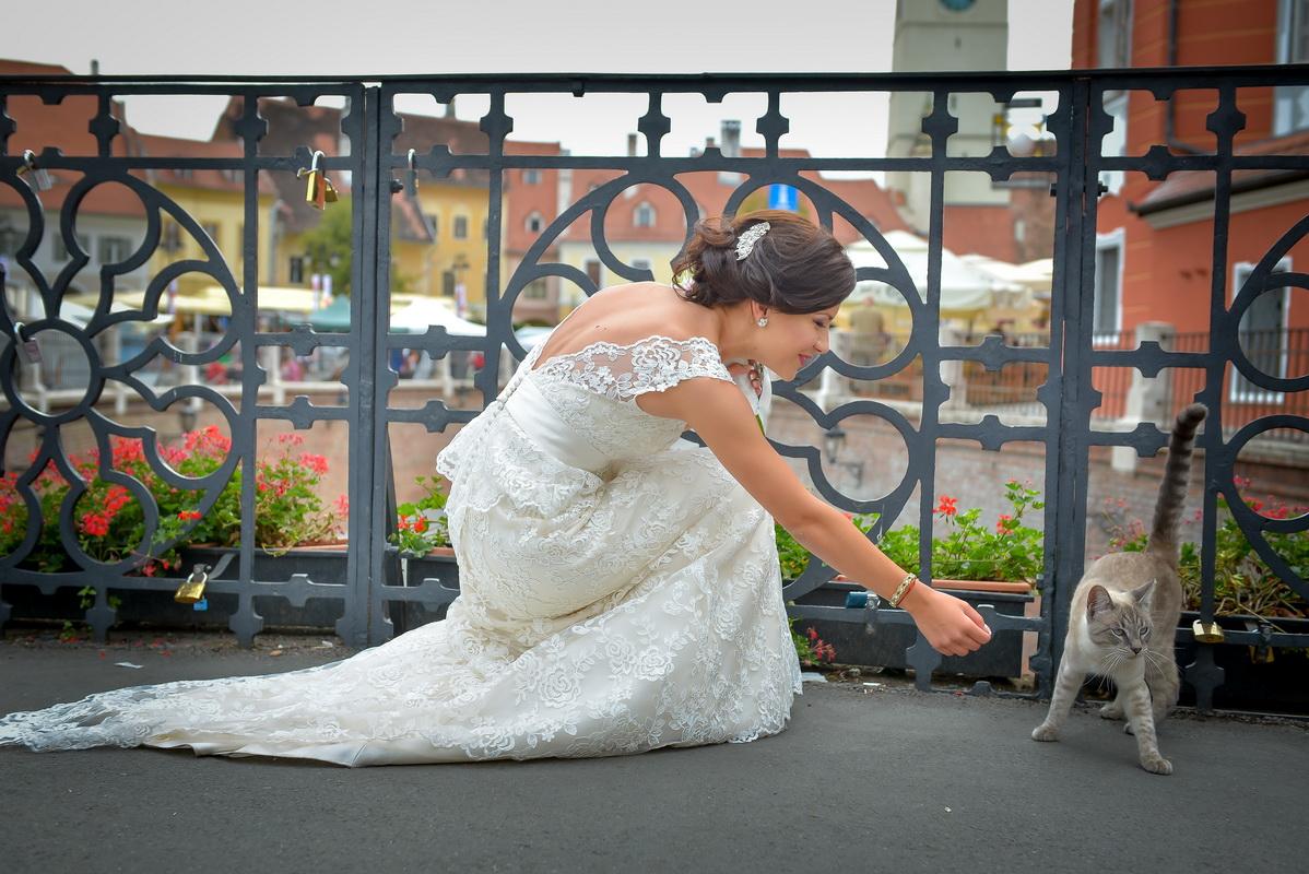 fotograf sibiu, fotograf nunta sibiu, poze sibiu, poze nunta sibiu, pret nunta sibiu, pret nunta